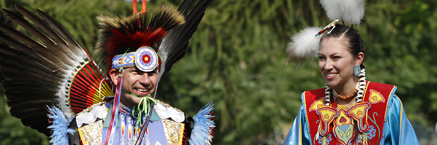 Things to do at the Naperville Pow Wow