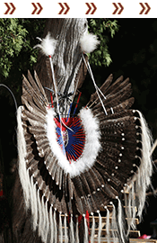 Harvest Pow Wow at Naperville Settlement